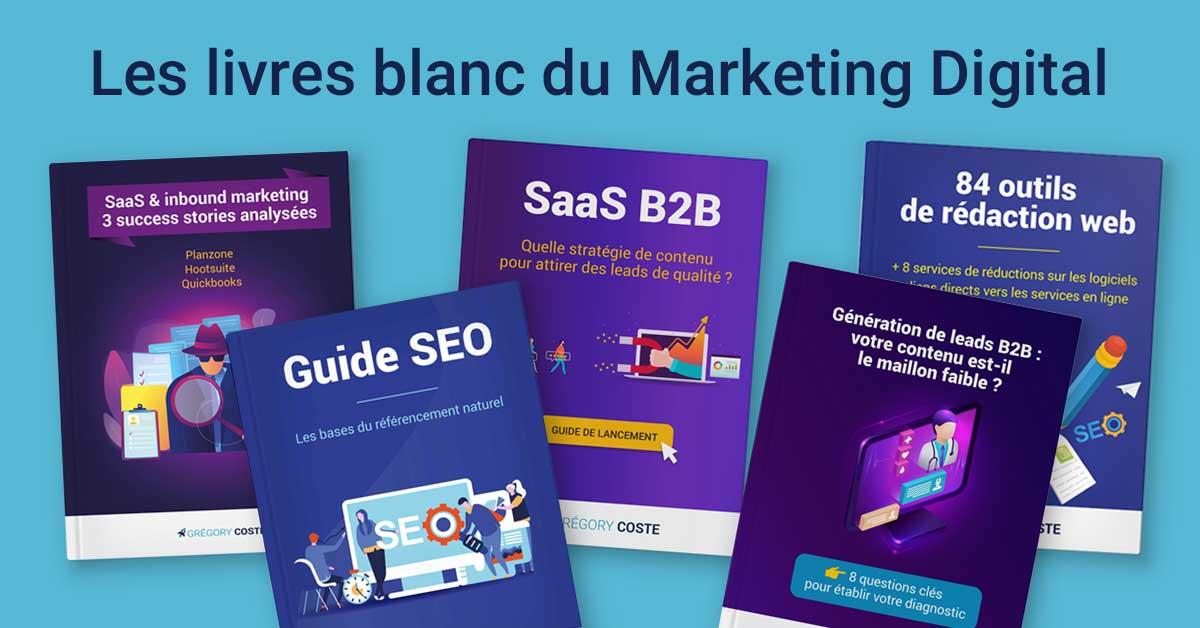 Livres Blancs sur le Marketing Digital